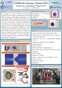 Poster of the ESPResSo Summer School 2013